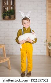 Stylish boy in yellow pants and with ears of the Easter Bunny. Toddler posing in studio in Easter scenery with two bunnies