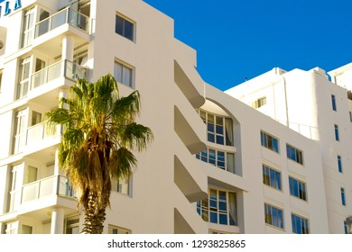 Stylish building with palm tree in Cape Town, South Africa