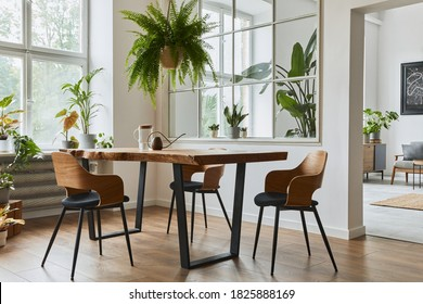 Stylish and cozy interior of dining room with design craft wooden table, chairs, plants, velvet sofa, poster map and elegant accessories in modern home decor. Template. - Shutterstock ID 1825888169