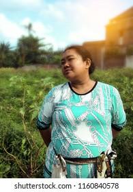 Stylish In The Fields Solanum Melongena Plants Bali, Indonesia