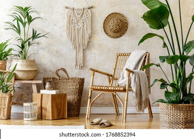 Stylish and floral composition of living room interior with rattan armchair, a lot of tropical plants in design pots, decoration, macrame and elegant personal accessories in cozy home decor.
