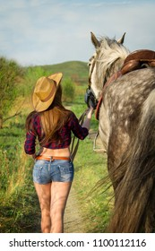 Stylish girl rider dressed as an American cowboy is on a rural road with a saddled horse walking during sunset at summer day. Beautiful sexy cowgirl with hat and jeans shorts.