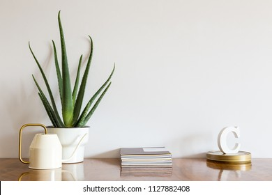 Stylish home interior mock up photo frame, aloe vera plant, design watering can and books.