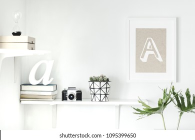 The stylish interior with concept shelfs, mock up poster frame and cactus in hipster pot. Modern room with white walls.