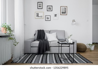Stylish interior with gray sofa and pattern black and white rug