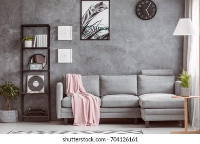 Stylish living room with comfortable grey corner sofa, small tree on the floor and black clock on dark wall