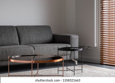 Stylish living room with gray couch and two metal coffee tables