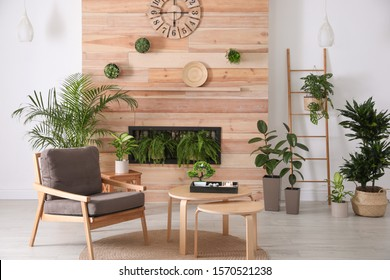 Stylish living room interior with armchair, green plants and miniature zen garden. Home design ideas - Shutterstock ID 1570521238