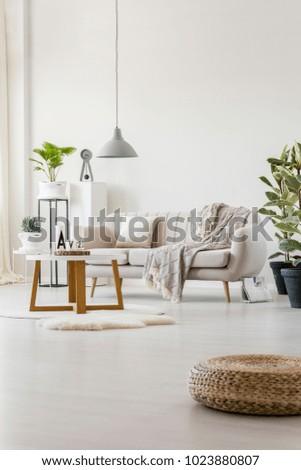Stupendous Stylish Living Room Interior Bright Sofa Stock Photo Edit Creativecarmelina Interior Chair Design Creativecarmelinacom
