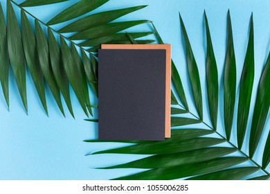 Stylish minimal composition with blank black paper and green leaves on a blue pastel background. Artwork mockup with copy space