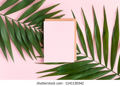 Stylish minimal composition with blank colour paper and green leaves on a pink pastel background. Artwork mockup with copy space