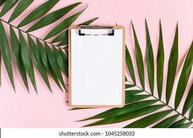 Stylish minimal composition with clip board and green leaves on a pink pastel background. Artwork mockup with copy space