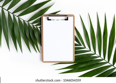 Stylish minimal composition with clip board and green leaves on a white pastel background. Artwork mockup with copy space