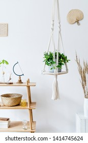 Stylish and minimalistic boho interior with design and handmade macrame shelf planter hanger for indoor plants, wooden furnitures, elegant accessories ,rattan basket and leaf. Cozy home decor.