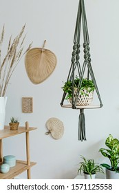 Stylish and minimalistic boho interior with design and handmade macrame shelf planter hanger for indoor plants, palm leaf, wooden furnitures and elegant accessories. Cozy and minimalistic home decor.