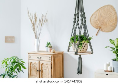 Stylish and minimalistic boho  interior of living room with wooden furnitures, gray macrame, design and elegant accessories. Botany  home decor with a lot of plants. Bright and sunny space.