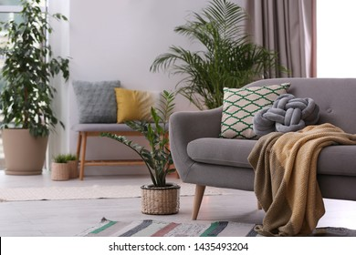 Stylish modern room interior with exotic houseplants