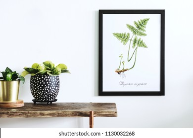 Stylish and modern scandinavian room with wooden console, mock up poster frame and beautiful plants. Design composition of home interior.