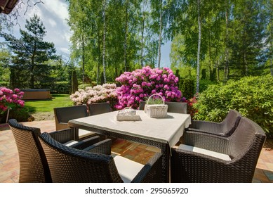 Stylish patio furniture in the beautiful garden