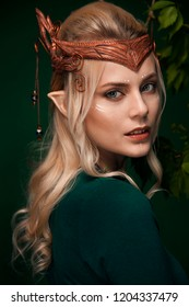 Stylish picture of a beautiful young girl elf