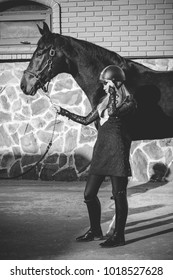 Stylish rider woman with a thoroughbred horse. The concept of love of horses and ladies lifestyle.