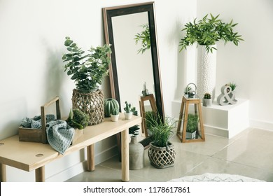 Stylish room interior with mirror and houseplants near white wall