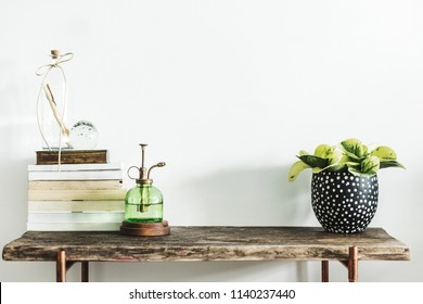 Stylish scandinavian composition of wooden console with books, plants and green sprinkler. Modern composition of home interior with copy space.