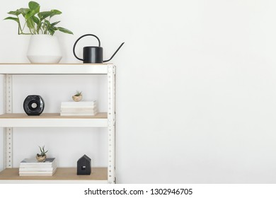 Stylish scandinavian open space interior with white bookstand, plant and accessorries. Empty white walls. Copy space for inscriptions.