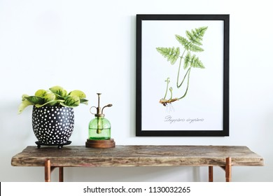 Stylish scandinavian sapce with wooden console, mock up poster frame, beautiful plants and sprinkler. Modern composition of home interior.