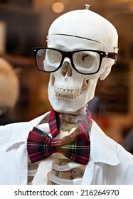 stylish skeleton in jacket and bow tie with skull in glasses