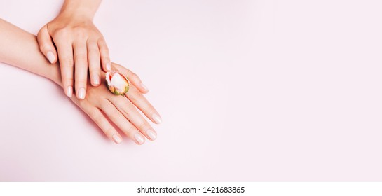Stylish trendy female manicure. Woman's Hands holding rose flower on pink background. Top view, flat lay