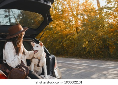 Stylish young woman sitting with cute white dog in car trunk and looking at sunny autumn trees. Road trip with pet. Traveling inside country due to coronavirus pandemic. Space for text