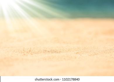 Stylishly beautiful seashell coral on sand background on sea