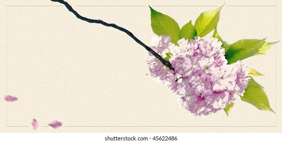stylized cherry blossom with copy space