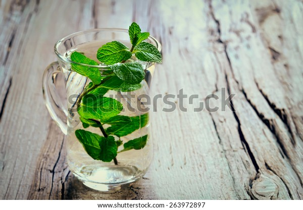 Stylized photo of a cup with fresh mint tea