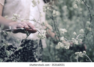 Stylized vintage shoot of a young woman in a field of wild flowers, edited in a cooler colour tone