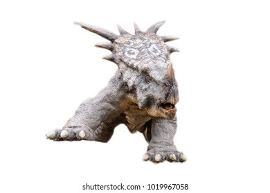 Styrakosaurus isolated on the white background