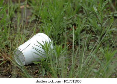Styrofoam cup in grass
