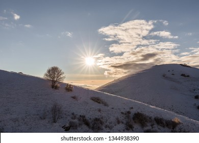 Subasio mountain (Umbria, Italy) in winter, covered by snow, with plants and sun