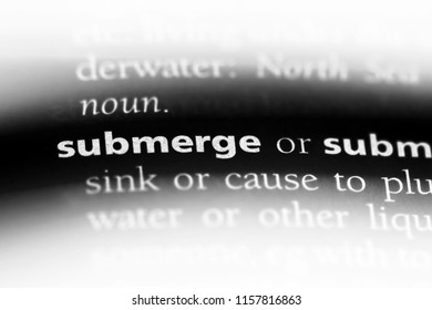 submerge word in a dictionary. submerge concept.