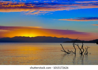 Submerged tree in still surf at dawn, with island and rising sun in background - Bushland Beach, Townsville, North Queensland Australia
