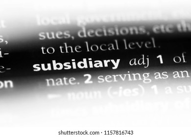 subsidiary word in a dictionary. subsidiary concept.