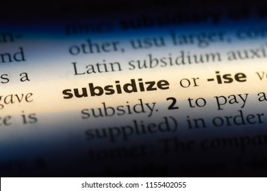 subsidize word in a dictionary. subsidize concept.