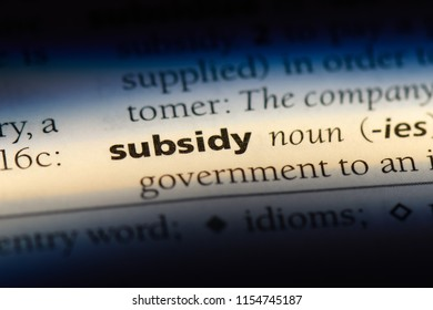 subsidy word in a dictionary. subsidy concept.