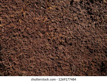 Substratum texture pattern background for garden agriculture coconut fiber