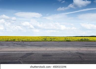 Suburb asphalt road and sun flowers field. Summer landscape