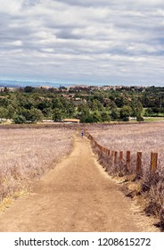 Suburban hiking trail. Dirt path, wooden fence posts. Brown dry grass. Cloudy sky. Trees, homes in background.
