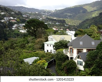 Suburban houses in beautiful bush setting  on hillside at Crofton Downs Wellington New Zealand