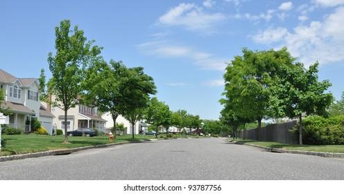 Suburban Neighborhood Street on Sunny Blue Sky Day