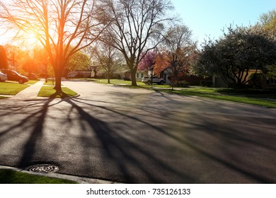 Suburban Street with Residential Housing